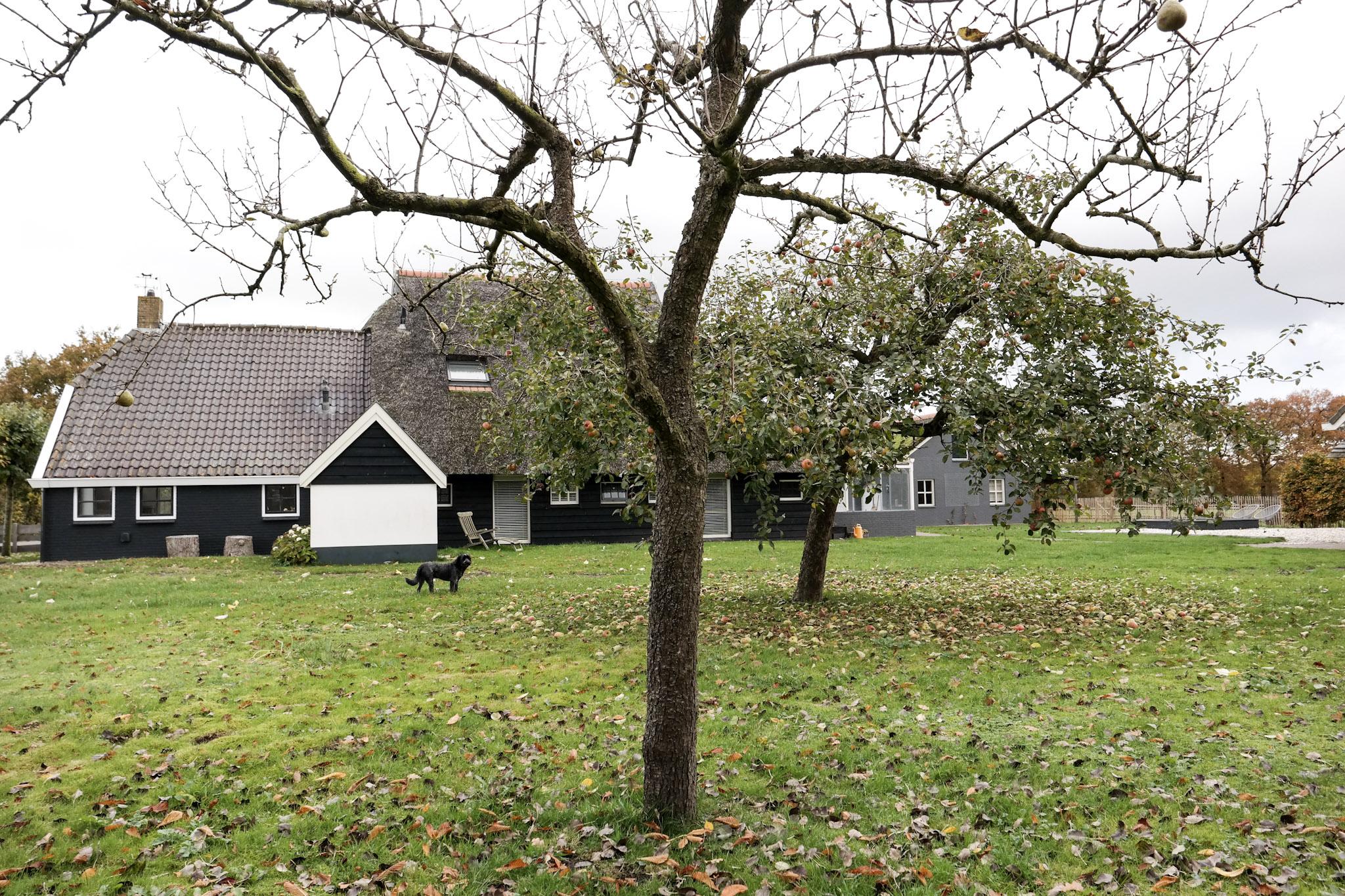 thuis op nummer 14 - boerderij