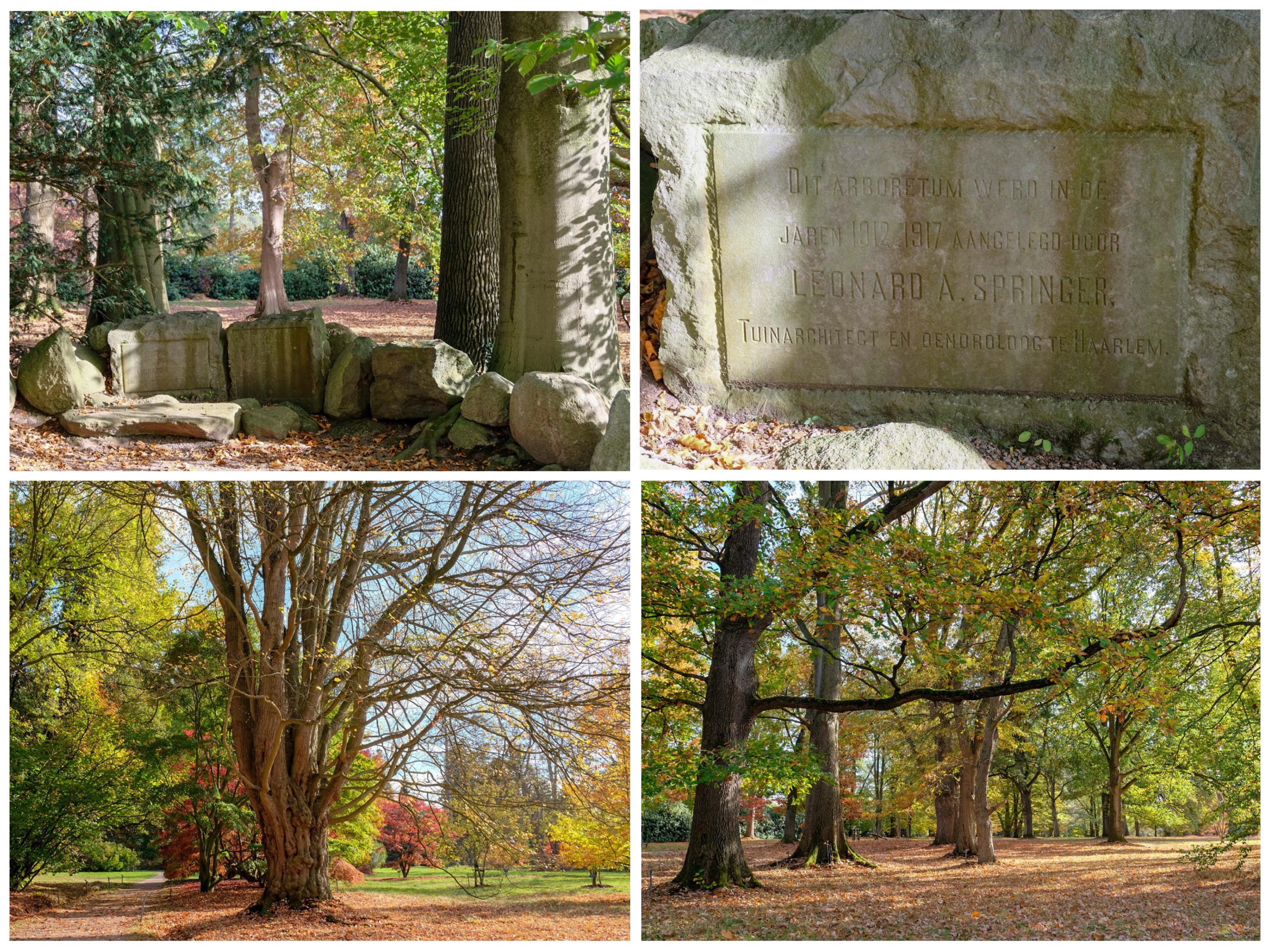 thuis op nummer 14 - Arboretum Poort Bulten
