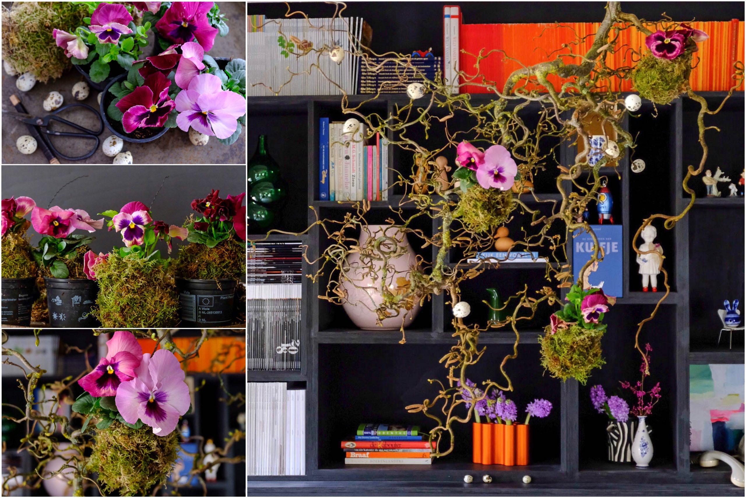 Voorjaarshanger met violen - Maandelijks terugblik-en weetjesblog #3