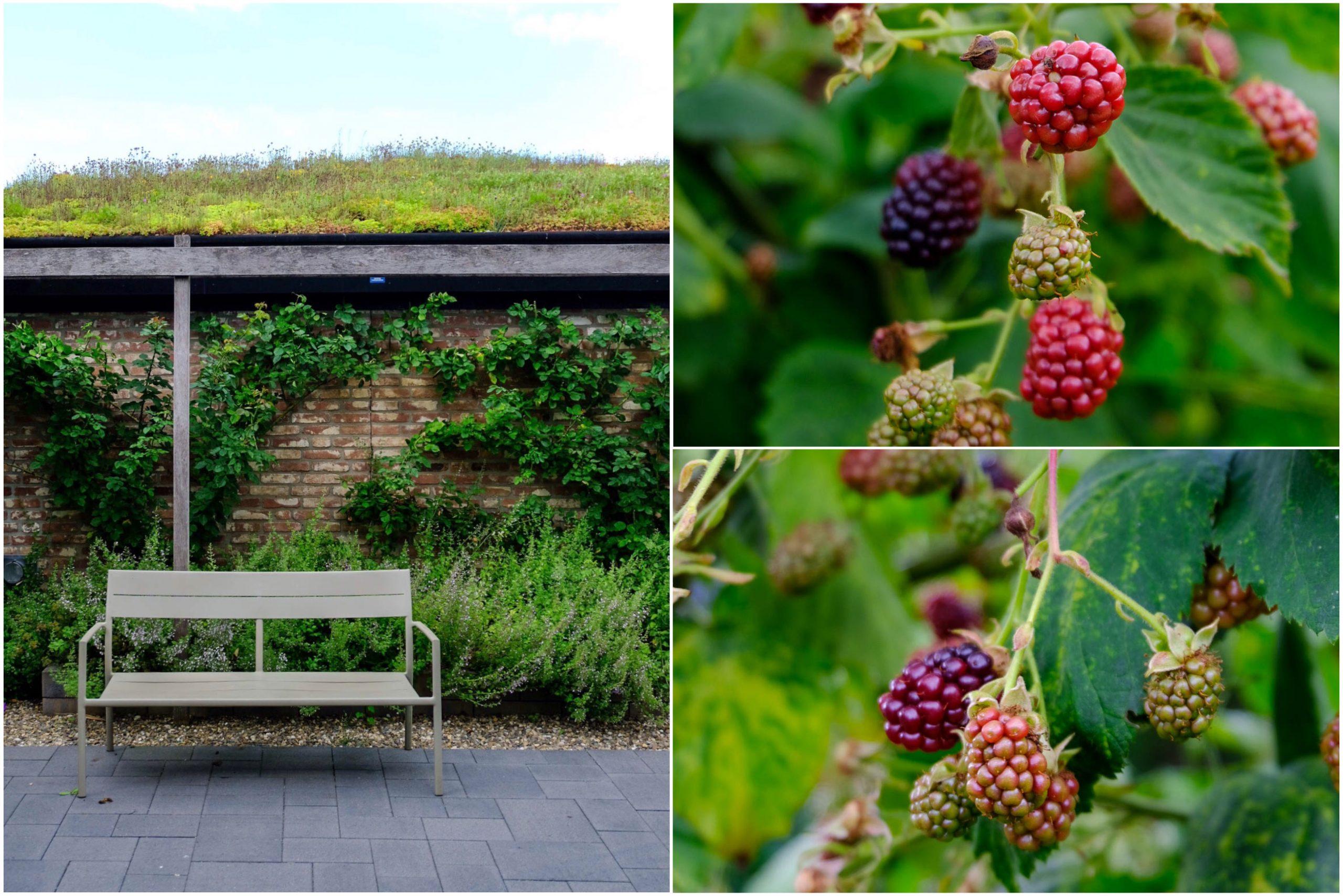 Tuinen van Appeltern, heel veel tuininspiratie.